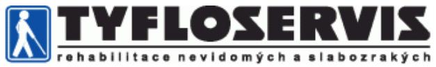Tyfloservis Logo